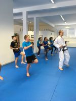 taekwondo11